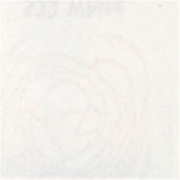 Thompson Enamels for Float - Opaque - White - 224g