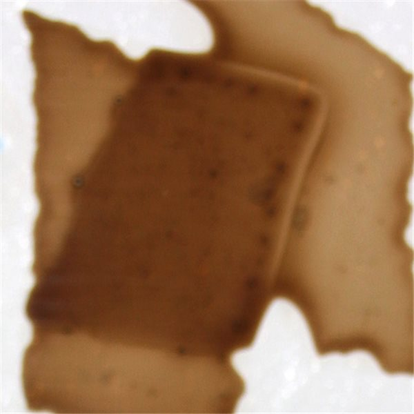 Confetti - Deer Brown - 400g - for Float Glass