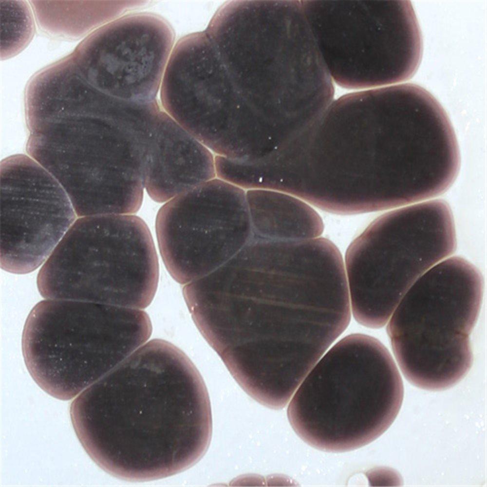 Frit - Dark Violet - Coarse - 1kg - for Float Glass