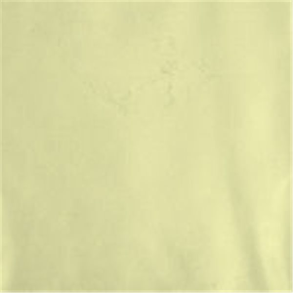 Metallic Effect Powder - Highlight Gold - 30g