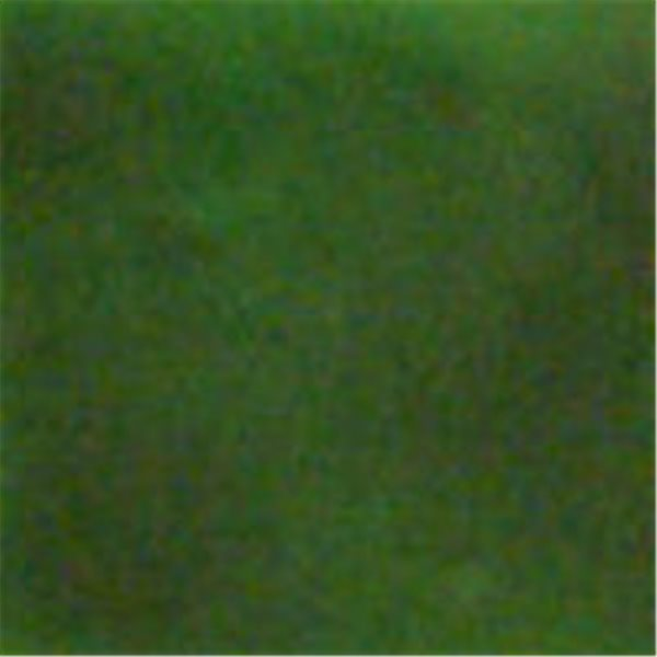 Colourmaster - Transparent - Green - 50g