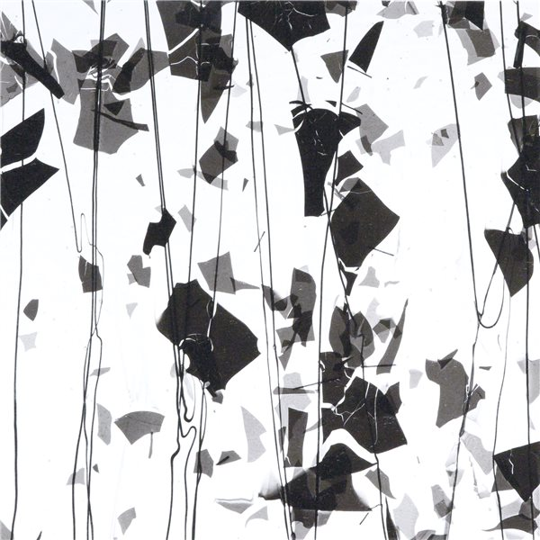 Bullseye Black & Black Streamers on Clear Base - Collage - 3mm - Single Rolled - Fusible Glass Sheets