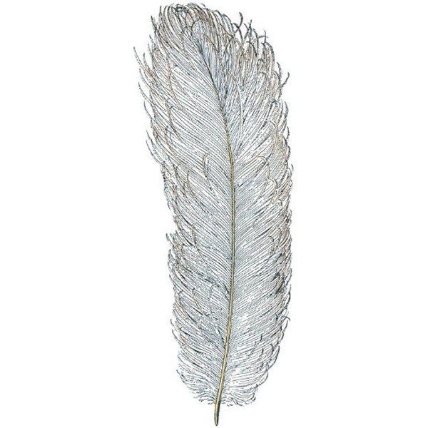 Texture Card - Plume d'Autruche - 5.8x17.5cm